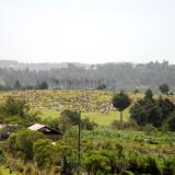 Vista al cementerio